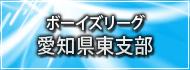 ボーイズリーグ愛知県東支部